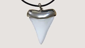 Shark tooth - Replica in Sterling Silver