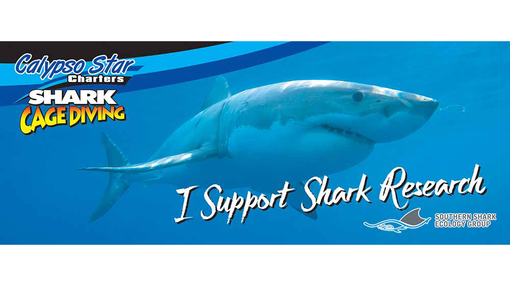 Shark Research Donation